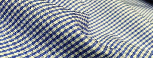 blue check poplin fabric